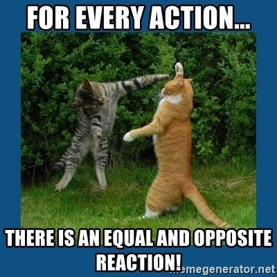 Action-Reaction meme